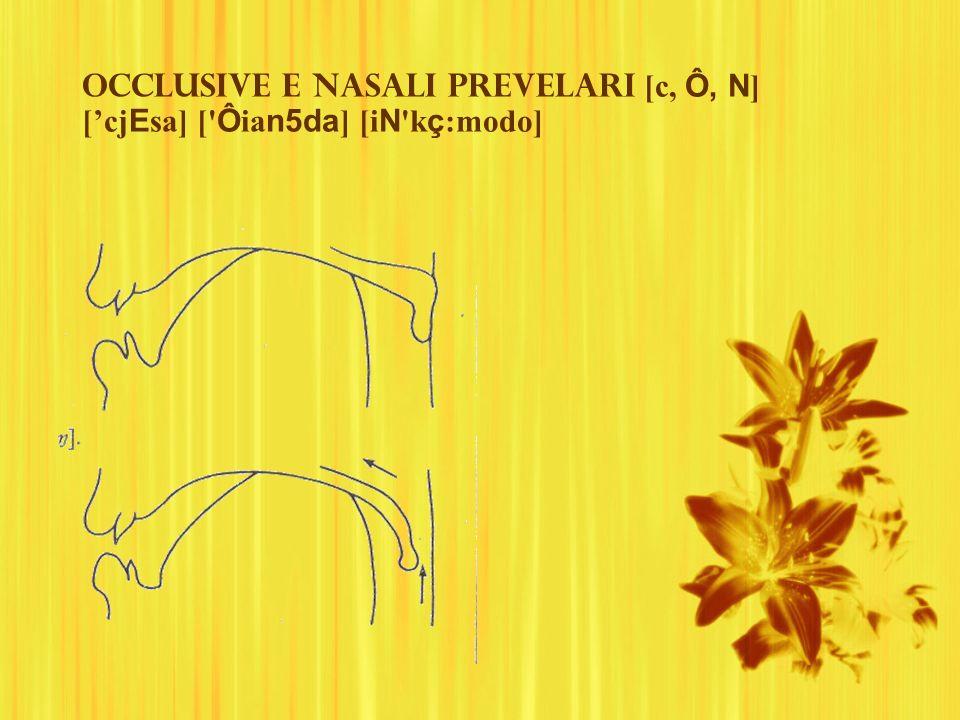 Occlusive e nasali prevelari [c, Ô, N] ['cjEsa] [ Ôian5da] [iN kç:modo]